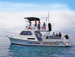 Manta Ray Dives of Hawaii