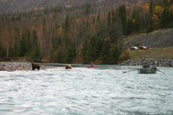 Alaska Troutfitters Guided Fishing