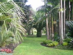 Palmco Garden