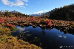 Cerro Alarken Nature Reserve