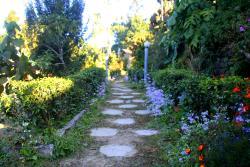 Garden Area - Wild Flower Retreat