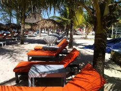 Queenco Palm Beach