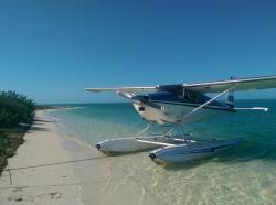 Nauti Wings - Key West Seaplane Tours