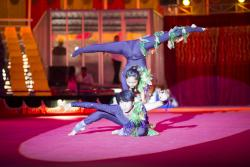 National Circus School of Cambodia