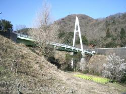 Okuno Echo Bridge