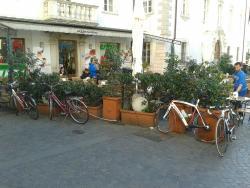 Caffe Trentino