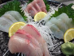 Chef's Choice Sashimi 4種
