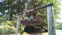 Tired Dog Ranch