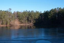 Carolina Bay Nature Preserve