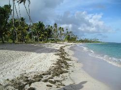Nearby beach in 2007