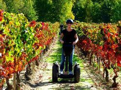 Segway la Rioja