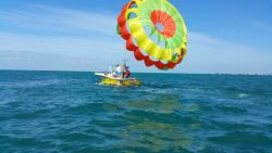 ‪Parawest Parasail Key West‬