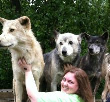 Wolf creek habitat and rescue