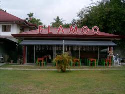 Flamoo