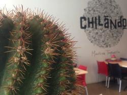 Chilando Mexican Taqueria
