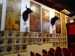 Bull Fighting Museum