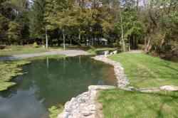 Limestone Springs Preserve