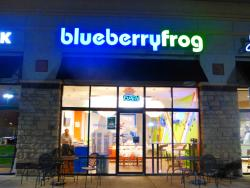 Blueberryfrog