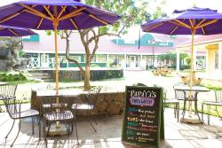 Papaya's Natural Foods & Cafe