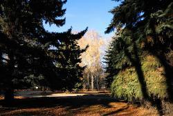 Bykhanov's Garden