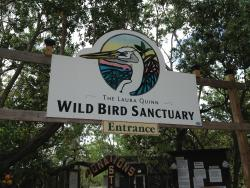 Florida Keys Wild Bird Rehabilitation Center