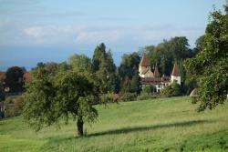 Schloss Münchenwiler