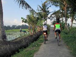 Bali Bike Hire - Rent a bicycle Bali
