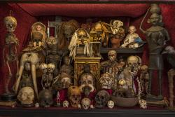 The Viktor Wynd Museum of Curiosities, Fine Art & UnNatural History