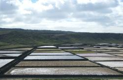 Panorama vanop terras
