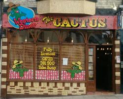 ‪The Cactus‬
