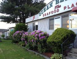 Ocean Harvest-The Seafood Restaurant