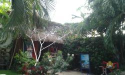 parte do fundo do hostel