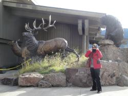Jackson Hole & Greater Yellowstone Visitor Center