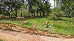 Parque Natural Municipal de Pouso Alegre