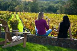 Knight Wine Tours