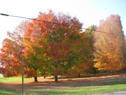 Michigan in its beautiful Fall Colors