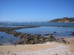 Ancient Fish Traps