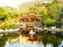八五二的香港一日游