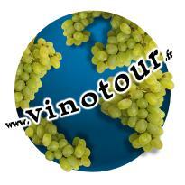 Vinotour