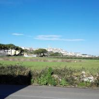 Villa della Vite