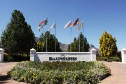 Blaauwklippen Wine Estate