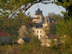 Chateau de Ternay