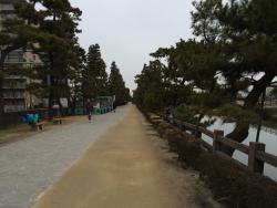 Soka Matsubara