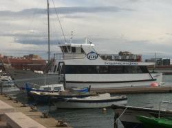 Tarragona Blau Excursiones Maritimas
