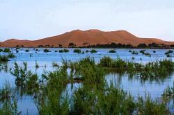 Disfruta Marruecos Viajes