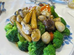 Magnolia Chinese Cuisine