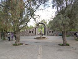 Jardin Botanico Mapulemu