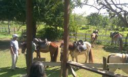 HoofPrint Horse Riding Ranch