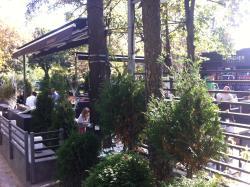 Sheher Park Cafe
