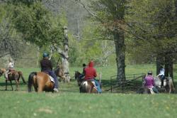 Wildwood Manor Ranch